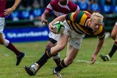 Rugby de contabilização Paarl Gymn da ação da bola do jogador Fotografia de Stock