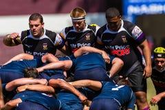 Cinzas Outeniqua do rugby do scrum dos jogadores Foto de Stock