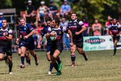 Cinzas Outeniqua do rugby da perseguição da bola do jogador Fotografia de Stock Royalty Free
