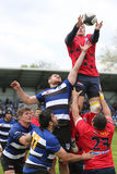 Ação do rugby - linha para fora Imagem de Stock Royalty Free