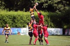 Ação do rugby - linha para fora Fotos de Stock Royalty Free