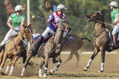 Ação dos cavaleiros do campeonato do mundo de PoloCrosse Imagem de Stock Royalty Free