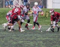 Ação em um jogo da lacrosse Foto de Stock Royalty Free