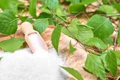Açúcar do vidoeiro do Xylitol Fotografia de Stock Royalty Free