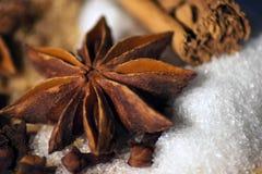 Açúcar e especiaria Imagem de Stock Royalty Free