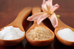Açúcar em colheres de madeira Fotografia de Stock Royalty Free