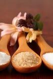 Açúcar em colheres de madeira Fotos de Stock Royalty Free