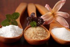 Açúcar em colheres de madeira Imagens de Stock