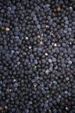 Açaí Acai莓果巴西农夫市场 免版税库存图片