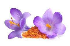 Açafrão da flor e especiaria secada do açafrão Imagem de Stock Royalty Free
