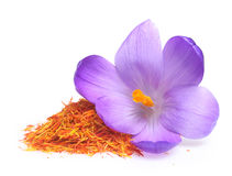 Açafrão da flor e especiaria secada do açafrão Foto de Stock