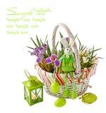 Açafrão da Páscoa com um coelho de easter Imagem de Stock Royalty Free