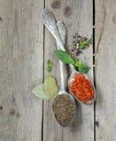 Açafrão e cominhos da especiaria no colheres Foto de Stock