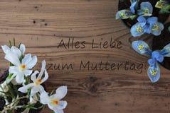 Açafrão e jacinto, dia de mães feliz dos meios de Muttertag Imagens de Stock Royalty Free