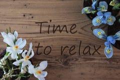 Açafrão e jacinto, tempo do texto relaxar Imagens de Stock Royalty Free