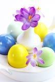Açafrões bonitos para Easter Imagem de Stock Royalty Free