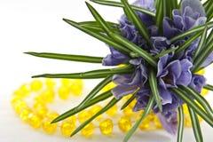 Açafrões com os grânulos amarelos no branco Imagens de Stock Royalty Free