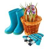 Açafrões em uma cesta, em luvas e em botas em um fundo branco Foto de Stock