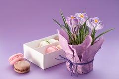 Açafrões potenciômetro e caixa dos macarons Fotografia de Stock
