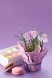Açafrões potenciômetro e caixa dos macarons Foto de Stock Royalty Free
