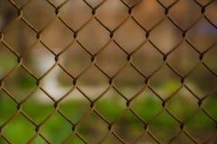 Aço da rede de arame com fundo da grama verde ilustração royalty free