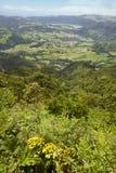 Açores ajardinam com lago e vila Furnas de Salto Cavalo Fotos de Stock