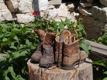 Aération augmentant des bottes sur un tronc Photos stock