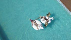 Aéreo - mujeres jovenes que toman el sol en los colchones de aire el unicornio y el Pegaso Resto atractivo de las chicas jóvenes  almacen de video