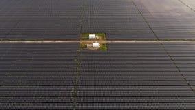 Aéreo - planta de energias solares enorme vídeos de arquivo