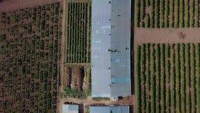 Aéreo - vuelo sobre el invernadero en el cual se producen las uvas Invernaderos viejos almacen de video