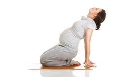 Aérobic de pratique de femme enceinte Image libre de droits
