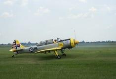 Aéronefs jaunes, crus Photos libres de droits
