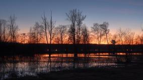 Aéroport de Kloten de réserve naturelle, Suisse, coucher du soleil Images libres de droits
