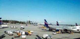 Aéroport de Sheremetyevo, Russie - août 2017 : Aéroport de Sheremetyevo, lignes aériennes russes Aeroflot Image libre de droits