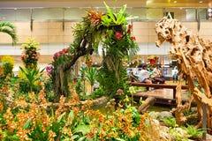 Aéroport de Singapour Changi Image stock