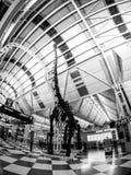 Aéroport international de lièvres de ` de Chicago O à l'intérieur près du concours C Photographie stock libre de droits