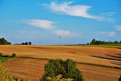 Aérostat au-dessus d'un champ pendant l'été Photographie stock libre de droits