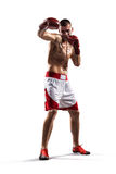 Aíslan al boxeador de Professionl en blanco Fotos de archivo libres de regalías
