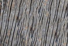 Aísle el arte de la vieja textura de madera Fotos de archivo libres de regalías