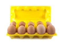 Aísle los huevos en el conjunto Imágenes de archivo libres de regalías