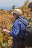 Aîné au nordic marchant dans le paysage de la La Palma Images stock