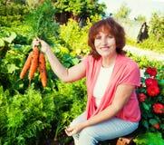 Aîné avec la carotte Images libres de droits