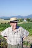 Aîné dans le paysage de Turiec, Slovaquie Photographie stock