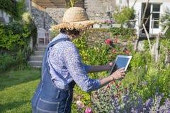 Aîné de femme prenant la photo avec son PC de comprimé dans le jardin Image stock