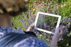 Aîné de femme prenant la photo avec son PC de comprimé dans le jardin Photos stock