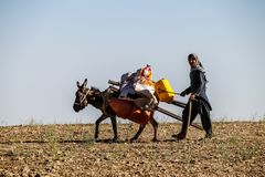 Aîné de village de l'Afghanistan fonctionnant son lopin de terre photographie stock