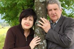 Aîné et son descendant restant l'arbre proche Photo stock
