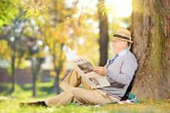 Aîné lisant un journal en parc à l'automne Photo libre de droits