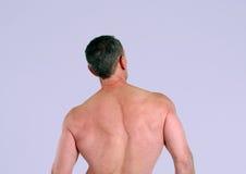 aîné musculaire d'homme arrière Photos stock