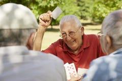 Aînés actifs, groupe de cartes de jeu de vieux amis au stationnement Photos stock